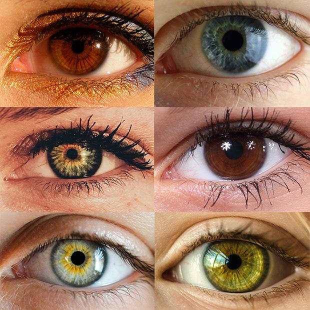Eye Color Trivia Bernalillo Nm The Vision Store